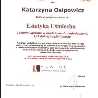 certyfikat 17